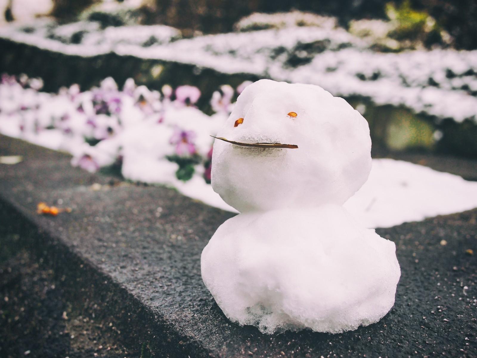 やればやるほど稼げるチャットレディ!まさに雪だるま式!
